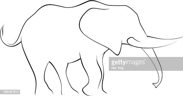 Elephant drawing in black and white