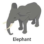 Elephant icon, isometric style