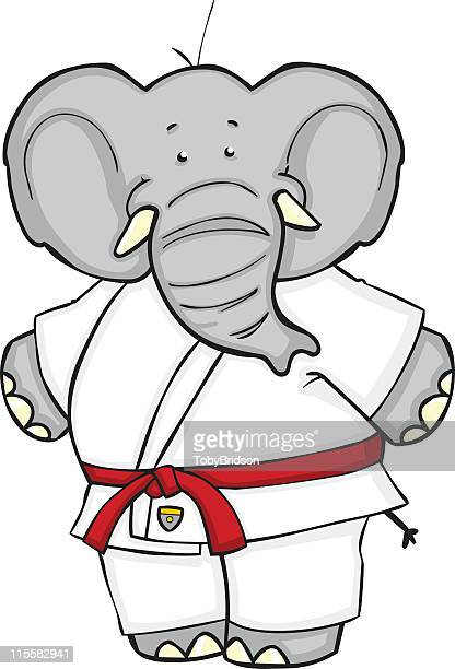 Elephant Judo