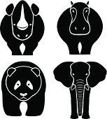 Elephant, rhinoceros, hippopotamus, panda