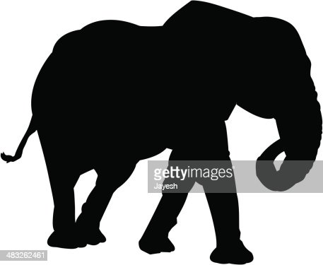 keywords african culture african elephant