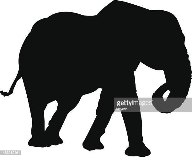 elephant silhouette - asian elephant stock illustrations
