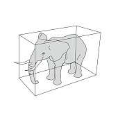 Elephant with 3D Box
