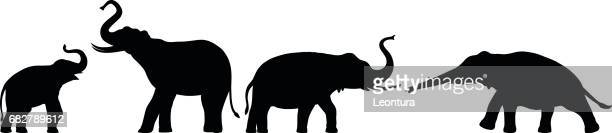 elephants - asian elephant stock illustrations