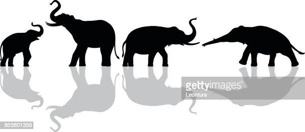 elephants - indian elephant stock illustrations