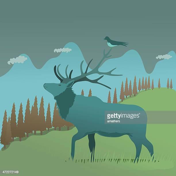 elk at dusk - elk stock illustrations