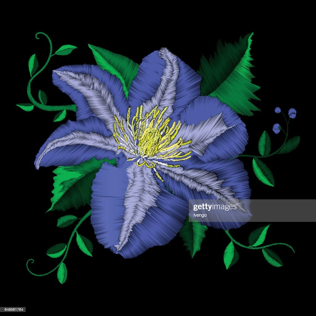 Embroidery blue flower angle pattern. Vector traditional folk blue clematis on black background for clothing design