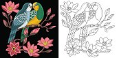 embroidery budgerigar parrots design