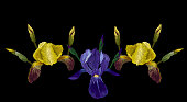 Embroidery fashion design, neckline template with yellow,blue an