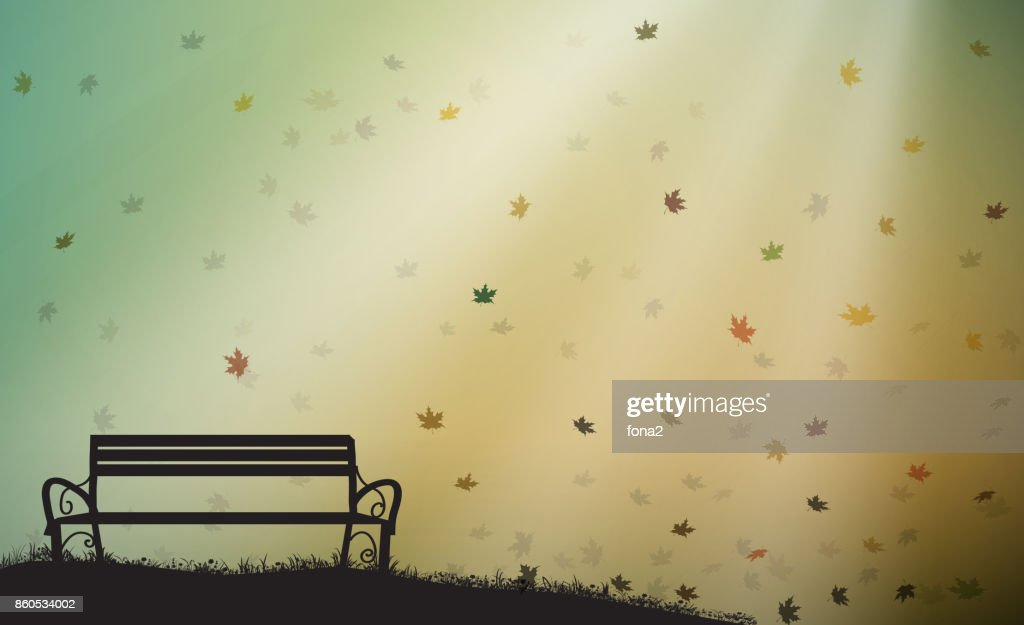 empty bench with last autumn sun rays and leaves falling, shadows, October warm day,