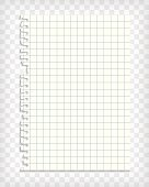 Empty checkered note book page with torn edge