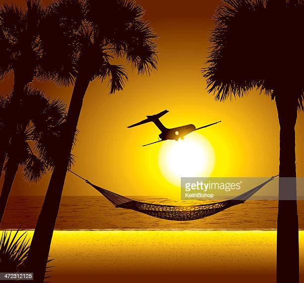 Ende des Urlaubs-Flugzeug im tropischen Ambiente
