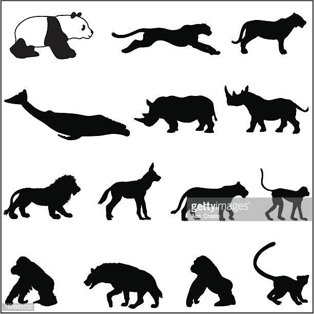 endangered species silhouettes - male animal stock illustrations