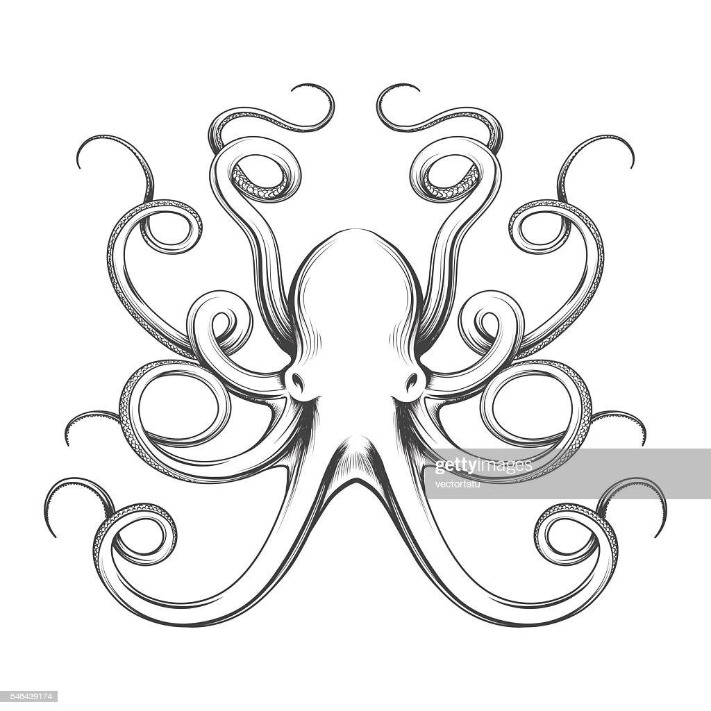 Engraved octopus vector icon