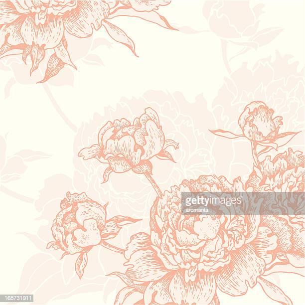 Engraved Peonies background