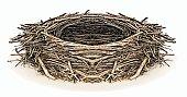 Engraving illustration of an Eagle nest