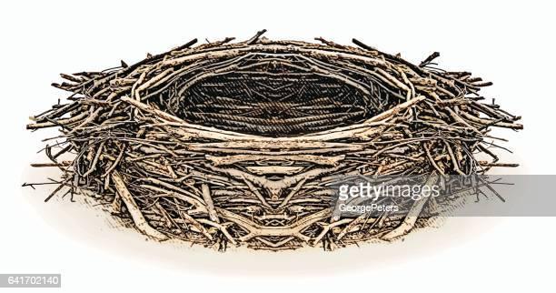 engraving illustration of an eagle nest - bald eagle stock illustrations