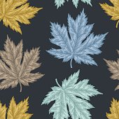 Engraving seamless pattern of maple leaves and seeds