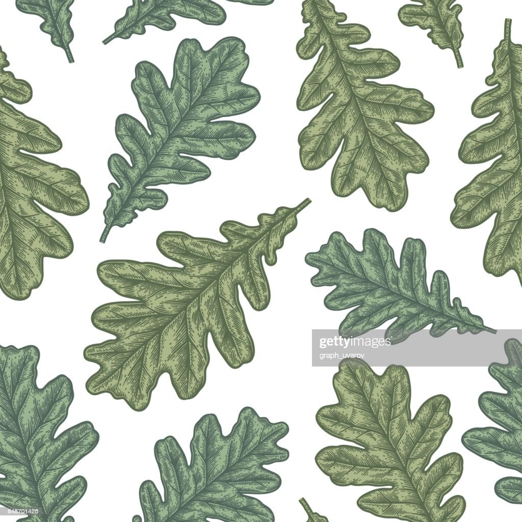 Engraving seamless pattern of Oak Leaf and Acorn.