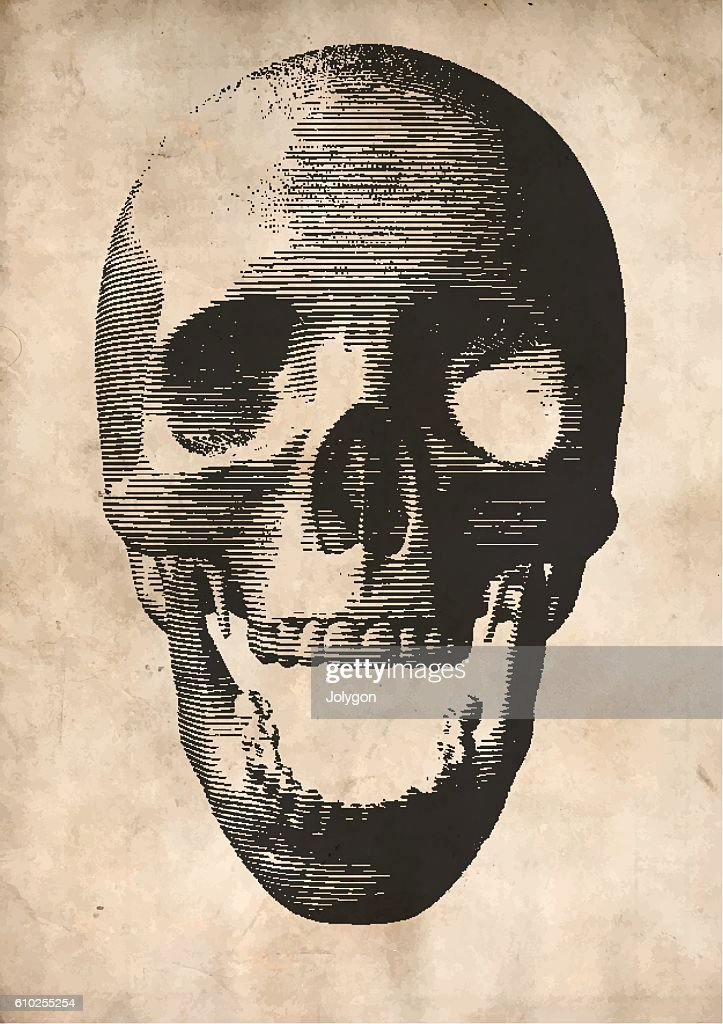 Engraving vector skull on old paper background