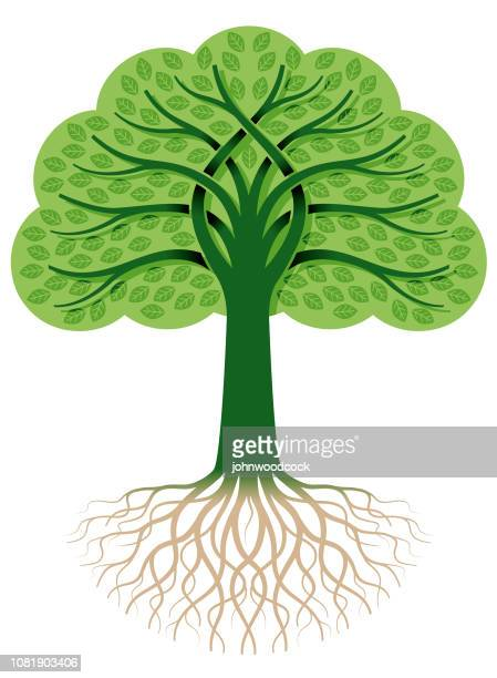 entwined green tree illustration - tree rings stock illustrations, clip art, cartoons, & icons