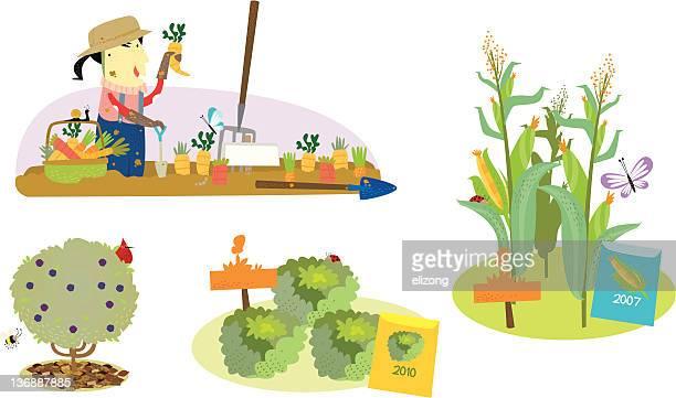 environment farming