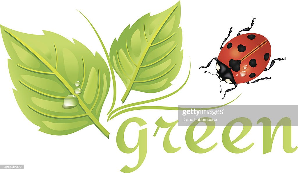 Environment Icon - Recycle Leaves and Ladybug