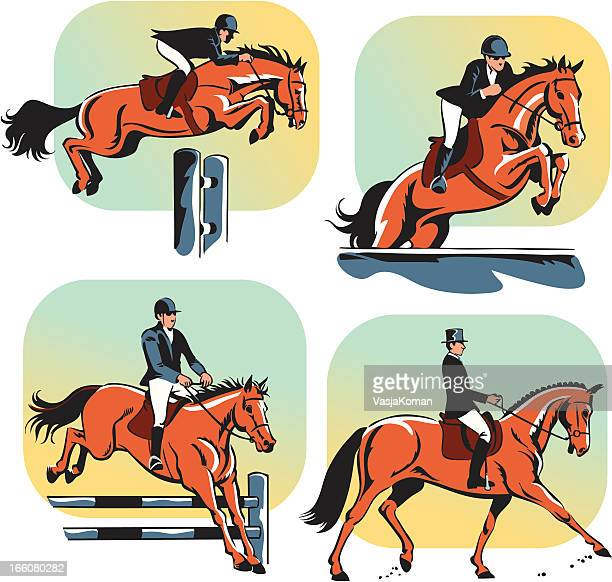 equestrian dressage and jumping - mare stock illustrations, clip art, cartoons, & icons