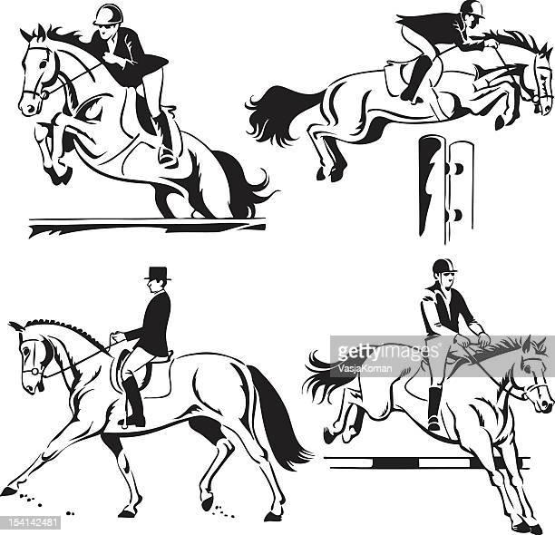 ilustraciones, imágenes clip art, dibujos animados e iconos de stock de equitación: concurso de saltos y doma y monta - caballo familia del caballo