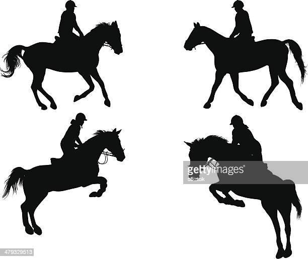 equestrian - horseback riding stock illustrations, clip art, cartoons, & icons