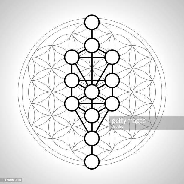 illustrations, cliparts, dessins animés et icônes de fleur géométrique ésotérique de la vie avec l'arbre séphirotic - chakra