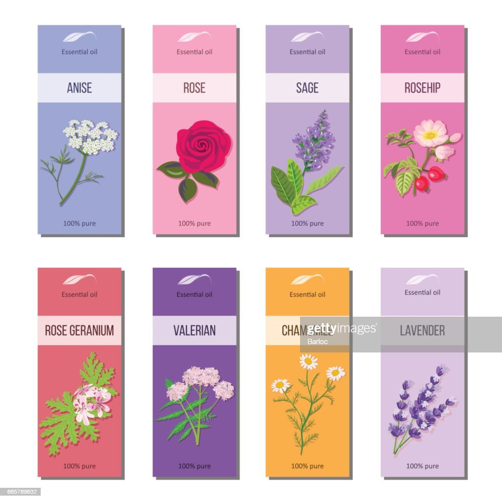Essential oil labels collection. Rose, anise, sage, rosehip, Lavender, rose Geranium, Chamomile, Valerian
