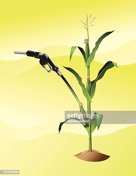 ethanol - distillation stock illustrations, clip art, cartoons, & icons