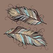 ethnic peacock Feathers
