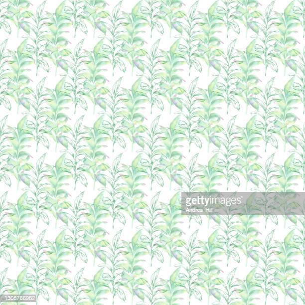 ユーカリはインクと水彩のシームレスなパターンを残します。ベクトル eps10 の図 - ユーカリの葉点のイラスト素材/クリップアート素材/マンガ素材/アイコン素材