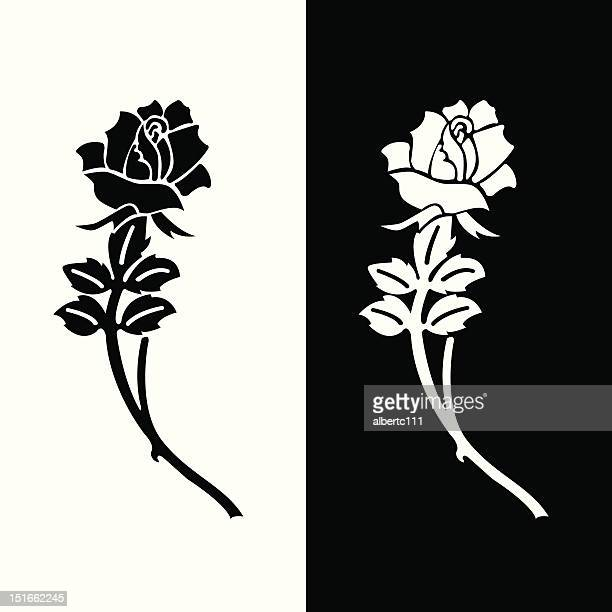 eulogy rose - rose flower stock illustrations, clip art, cartoons, & icons