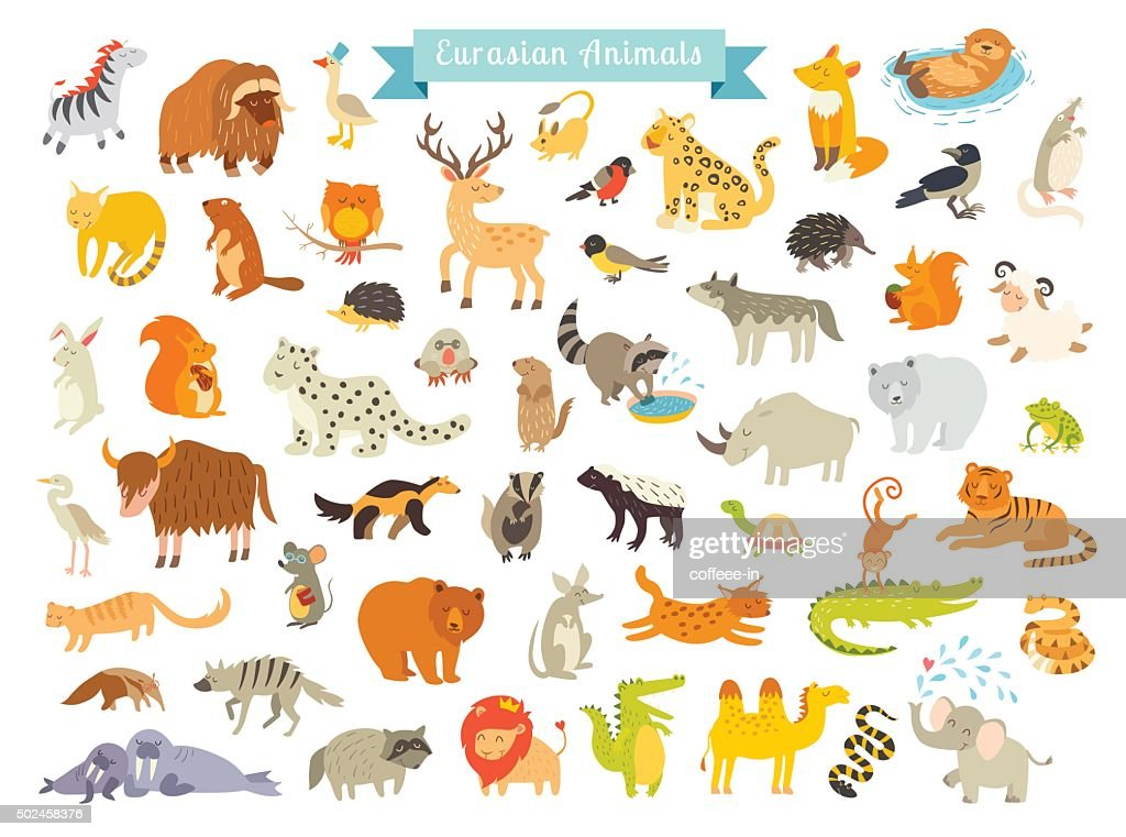 Eurasian animals vector illustration. The most complete big vector set