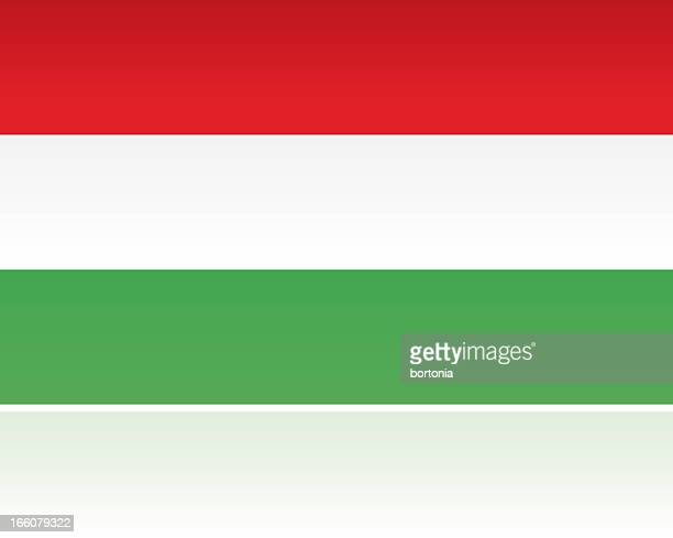 european flag: hungary - hungary stock illustrations