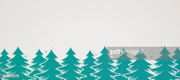 Evergreen Pine Tree fond