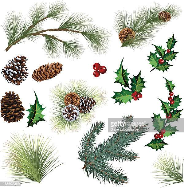 evergreen twig elements and holly leaf with berries clipart - spruce tree stock illustrations