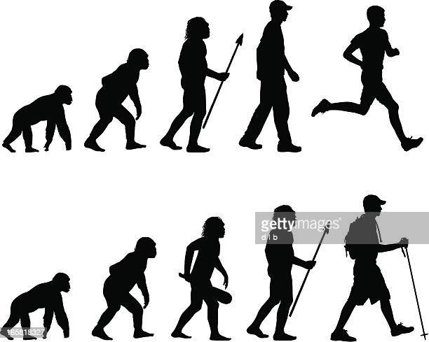 evolution des läufers und wanderstiefel - chimpanzee stock-grafiken, -clipart, -cartoons und -symbole
