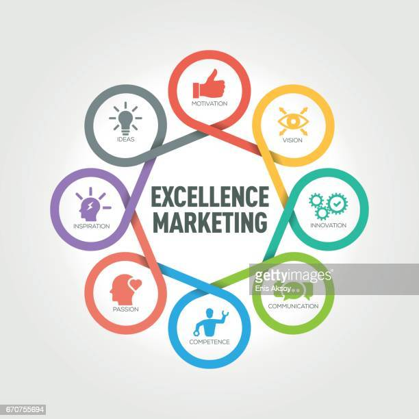 Excellence Marketing infographic with 8 steps, parts, options