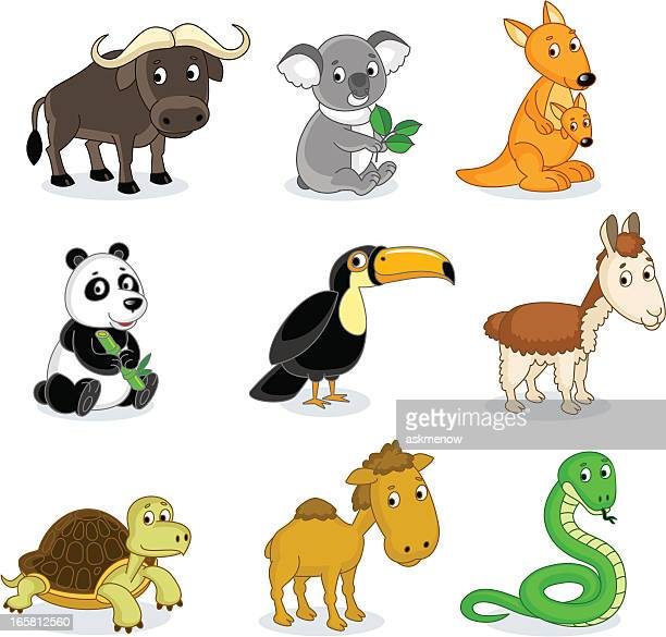 exotic animals - african buffalo stock illustrations, clip art, cartoons, & icons