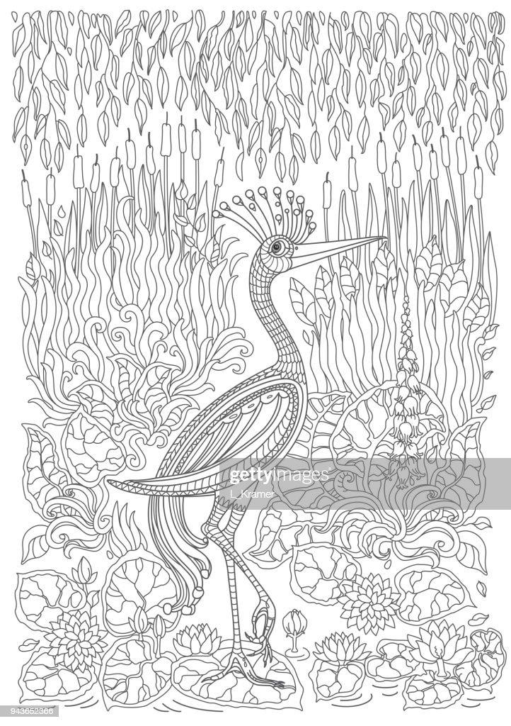 Kleurplaten Fantasie Volwassenen.Exotische Vogels Fantastische Bloemen Takken Bladeren Contour Dunne