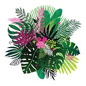 Exotic bouquet of tropical plants, palm leaves and flowers on a white background.