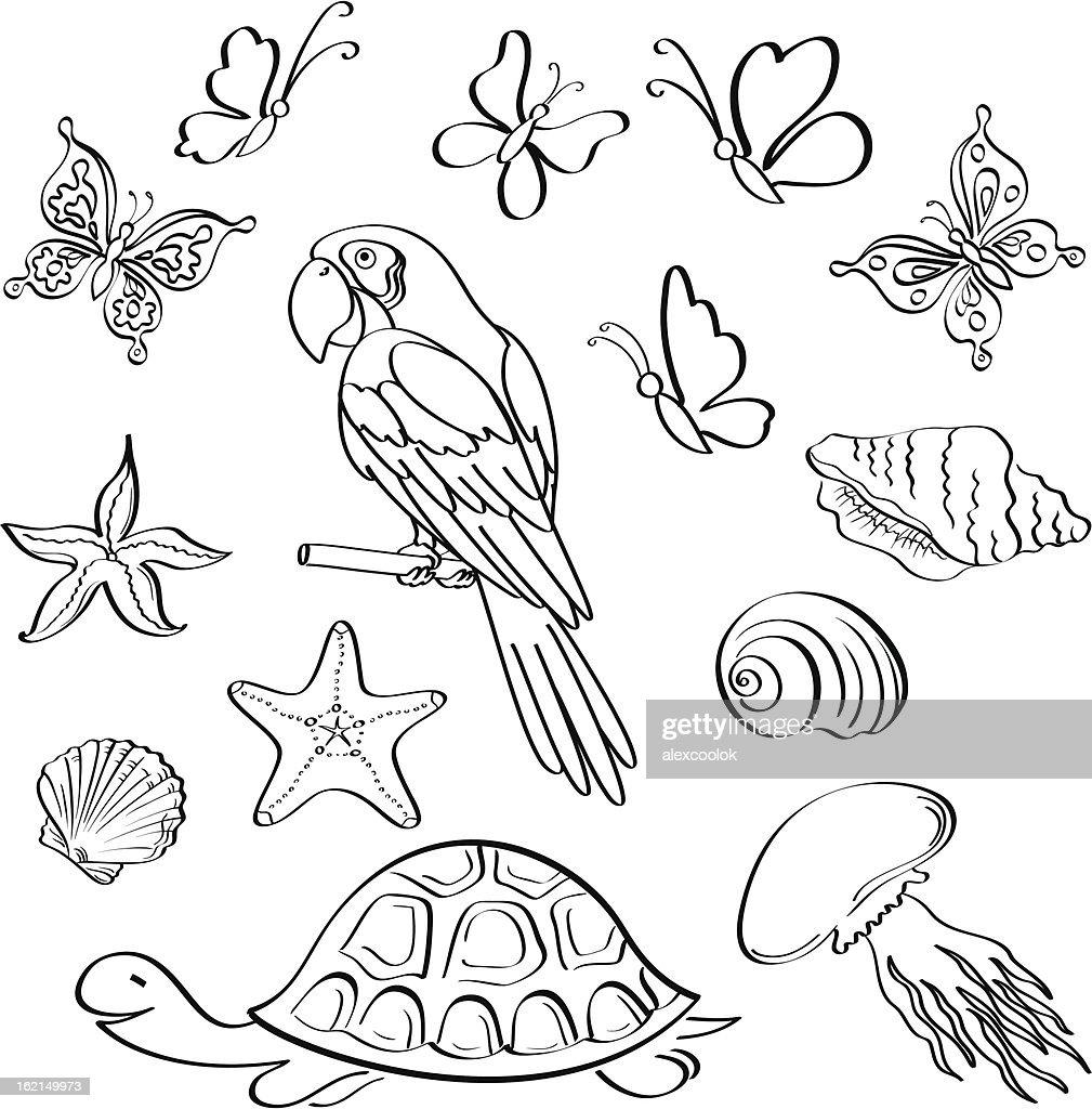 Exotic fauna, outline, set