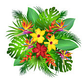 Exotic flowers with palm leaves, vector illustration.