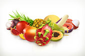 Exotic fruits. Juicy fruit and berries vector illustration isolated on white