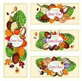 Exotic fruits, tropical garden food banners