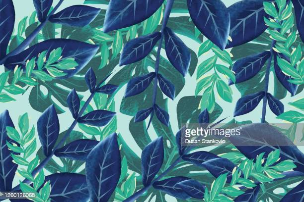illustrations, cliparts, dessins animés et icônes de fond de feuilles exotiques - tropical